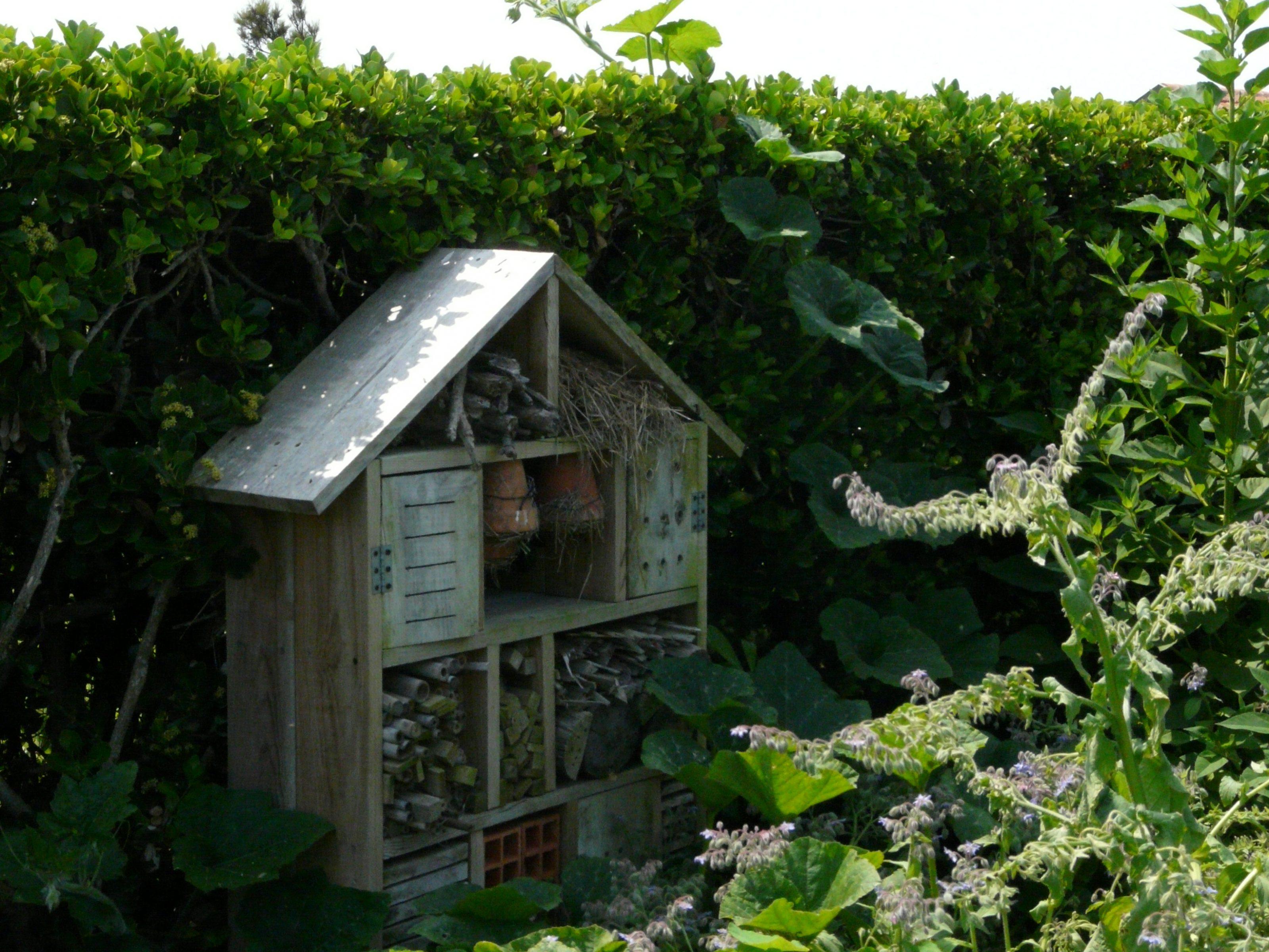Hôtel à insectes dans un jardin
